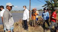 Dinas Pertanian dan Hortikultura melakukan Gerakan Pengendalian (Gerdal) hama tikus di Desa Mattunru-tunrue, Kecamatan Cempa, Pinrang, Sulawesi Selatan. (Dok Kementan)