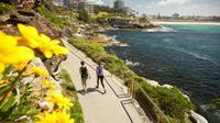 Daripada terus-terusan lari dari kenyataan, lebih baik lari di trek 'jogging' di Sydney ini.