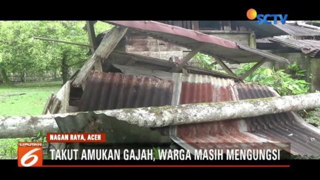 Serangan hewan liar ke permukiman penduduk terjadi di Kabupaten Nagan Raya, Aceh. Untuk ke sekian kalinya, gajah liar merusak lahan dan rumah warga.