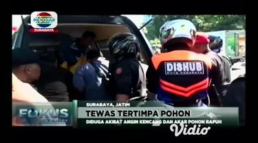 Tiga pengendara motor di Jalan Ahmad Yani Surabaya, tertimpa pohon besar yang tumbang. Diduga pohon peneduh yang berada di tepi jalan itu, sudah tua, sehingga tercabut dari akarnya.