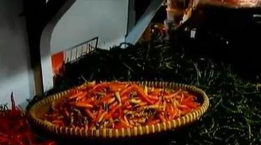 Cabai Rawit Super Dijual Rp 250 Per Buah di Banjarnegara