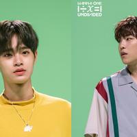 Woo Jin - Dae Hwi Wanna One (Naver/ Wanna One)