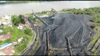 Pemprov Kalimantan akan membentuk tim khusus penanganan lubang bekas tambang batu bara yang sudah menewaskan 35 orang. (Liputan6.com/ Abelda Gunawan)