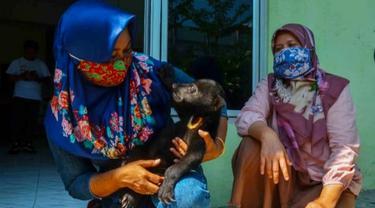 Petugas BBKSDA Riau bersama anak beruang yang terpisah dari induknya di Kabupaten Indragiri Hulu.