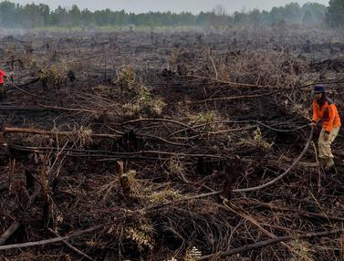 Kebakaran Landa Lahan Gambut di Riau