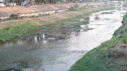 Kondisi aliran Kanal Banjir Timur yang mengalami kekeringan di kawasan Duren Sawit, Jakarta, Selasa (3/9/2019). Kemarau panjang yang melanda Ibu Kota menyebabkan debit air Kanal Banjir Timur berkurang hingga menampakkan dasar kanal. (Liputan6.com/Immanuel Antonius)
