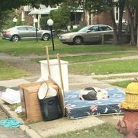 Boo, anjing pitbull ini ditinggalkan begitu saja di halaman rumah pemiliknya, padahal keluarga itu sudah pindah. (Foto: boredpanda.com)