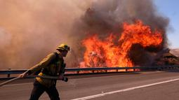 Petugas pemadam kebakaran menarik selang untuk memadamkan api di sepanjang Ronald Reagan (118) Jalan Bebas Hambatan di Simi Valley, Californnia (12/11). pi Woolsey pertama kali dilaporkan terdeteksi dekat Thousand Oaks. (AP Photo/Ringo H.W. Chiu)