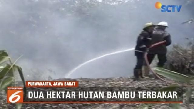 Api yang cepat menjalar membuat petugas harus berusaha memadamkan hingga satu jam.