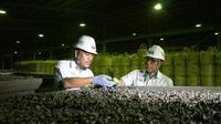 Pabrik Feronikel Pomala (P3FP) milik PT Aneka Tambang (Persero) Tbk di Sulawesi Tenggara. (Dok Kementerian BUMN)