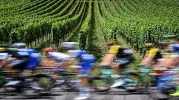 Para pebalap Tour de France melintasi kebun anggur pada etape keempat dengan jarak tempuh 207,5 km antara Mondorf-les-Bains dan Vittel, (4/7/2017). (AFP/Lionel Bonaventure)