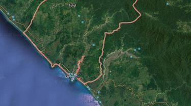 Hutan di Aceh Barat