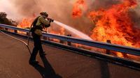 Petugas pemadam kebakaran berusaha memadamkan api di sepanjang Ronald Reagan (118) di Simi Valley, Californnia (12/11). Api Woolsey menjalar ke jalan raya dan menuju kota pesisir, termasuk kawasan wisata Malibu dan Calabasas. (AP Photo/Ringo H.W. Chiu)