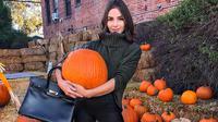 Olivia Culpo awali karir dari tanah kelahirannya, yaitu Rhode Islan, USA dan semakain beranjak naik hingga kini  setelah juarai Miss Universe 2012. (Liputan6.com/Instagram/oliviaculpo)