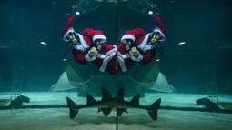 Penyelam berpakaian Sinterklas bermain bersama ikan saat tampil dalam pertunjukan bawah laut bertema Natal di Akuarium COEX, Seoul, Korea Selatan, Jumat (7/12). (Ed JONES/AFP)