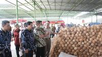 Ekspor kelapa Sumsel sempat ditolak di Thailand karena kondisi kelapa bertumbuh tunas (Dok. Humas Pemprov Sumsel / Nefri Inge)