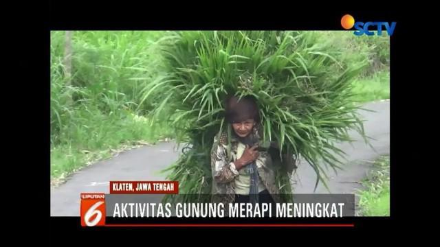 Aktivitas vulkanik Gunung Merapi terus meningkat. Luncuran lava pijar disertai hembusan awan panas terus terlihat. Meski demikian, warga terlihat tetap merumput di kawasan hutan Merapi.