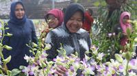Wali Kota Surabaya Tri Rismaharini mengunjungi laboratorium tanaman anggrek dan budidaya jamur di Surabaya, Jawa Timur (Foto: Liputan6.com/Dian Kurniawan)