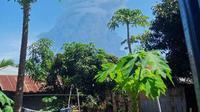 Erupsi Gunung Ili Lewotolok, Lembata, NTT. (Foto: Istimewa)