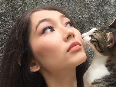 Devina Aureel memiliki kucing yang ia beri nama Macican. Kucing ini merupakan jenis kucing domestik yang dirawat Devina sejak kucing tersebut masih kecil. (Liputan6.com/IG/@devinaureel).