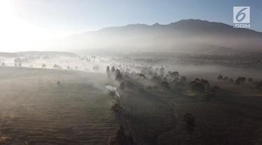 Cuaca dingin yang terjadi di Bandung membuat kebun teh milik petani menjadi rusak.