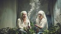 Sekelompok biarawati menanam ganja dengan tujuan untuk mengobati orang