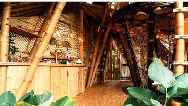 Pesona Glamping Bambu Bertema Tropis Eksotis di Bali