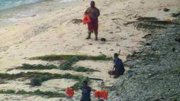 "Tiga orang pelaut diselamatkan oleh pasukan AL Amerika Serikat dari pulau tak berpenghuni Faradik, Mikronesia, 7 April 2016. Mereka menuliskan kata ""help"" menggunakan dahan pohon palem di atas hamparan pasir pantai. (ENSIGN JOHN KNIGHT/NMCO/AFP)"