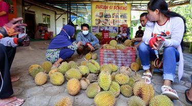 Durian boneng Banyuwangi memasuki masa panen. (Dian Kurniawan/Liputan6.com)