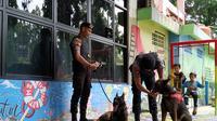 2 Ekor anjing K-9 disiagakan di Terminal Kampung Rambutan saat pengamanan arus mudik Lebaran 2019. (Yunita Amalia/Merdeka)