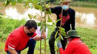 Ketua DPP PDIP Ahmad Basarah turut menyemarakkan kegiatan menanam pohon dan bersih-bersih sungai. (Liputan6.com/Fachrur Rozie)