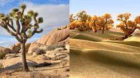 Potret 10 Gurun Pasir yang Paling Menarik di Dunia. (Sumber: Brain Berries)