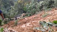 Longsor yang terjadi di jalur lintas Riau - Sumbar hingga kini sudah menelan empat korban jiwa. (Liputan6.com/M Syukur)