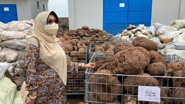 Komisi IV Apresiasi Kementan dan Mendorong Jawa Timur Jadi Produsen Utama Porang