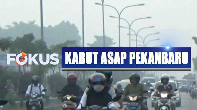 Kabut asap kembali selimuti Pekanbaru, aktivitas warga terganggu karena kualitas udara buruk dan jarak pandang turun.