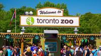 Kebun Binatang Toronto baru saja dikaruniai Badak langka yang menggemaskan. Foto: Expedia.com