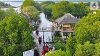 Objek wisata hutan mangrove yang kini mulai banyak menarik wisatawan. (Liputan6.com)