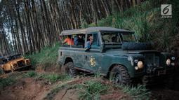 Dua mobil offroad 4x4 klasik Land Rover melewati hutan pinus menuju trek Sukawana-Cikole di Kab Bandung Barat, Jawa Barat, Jumat (19/10). Wisata offroad di Kab Bandung Barat ini memiliki panjang trek 18 km. (Liputan6.com/Faizal Fanani)