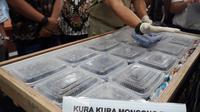 empat kecolongan lantaran seorang WNI berhasil menyelundupkan ratusan ekor anak kura-kura moncong babi ke Hong Kong, akhirnya hewan endemik Indonesia timur itu bisa kembali ke Tanah Air.