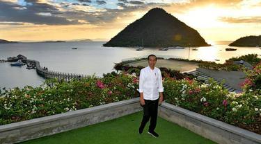 Kunjungi Labuan Bajo, Presiden Tinjau Pembangunan Pariwisata NTT