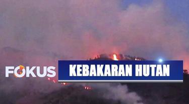 BPBD dan petugas Suwanting menurunkan 102 pendaki gunung akibat hutan Gunung Merbabu terbakar.