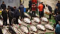 Orang-orang menghadiri tradisi lelang Tahun Baru di Pasar ikan Toyosu, Tokyo, Minggu (5/1/2020). Lelang ikan ini adalah kegiatan rutin usai Tahun Baru yang biasanya diadakan menjelang fajar di pasar ikan Toyosu. (Kazuhiro NOGI / AFP)