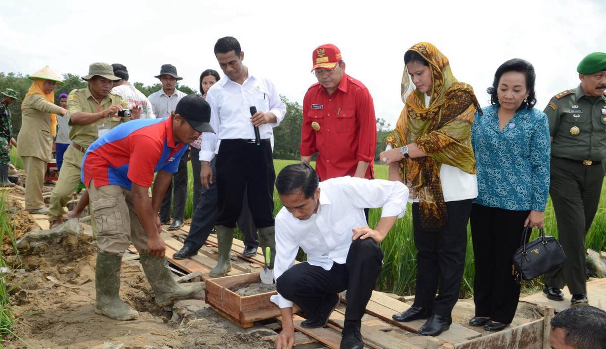 Presiden Joko Widodo meletakkan batu pertama pembangunan saluran irigasi tersier di Bendungan Irigasi Tersier Desa Mandor Kabupaten Landak, Kalbar, Selasa (20/1/2015). (Rumgapres/Agus Suparto)
