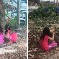 Inilah alasan di balik foto seorang bocah yang tak berhentinya menangis ketika beberapa orang petugas menebang pohon. (Foto: Facebook/Tricia Chwee Har Kim)