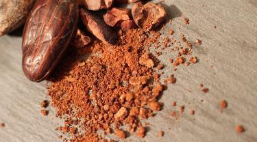 Ilustrasi Bubuk Kakao